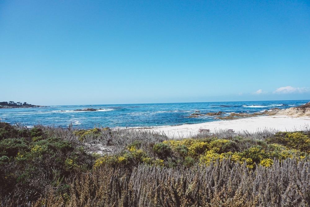 17 Mile Drive Beach