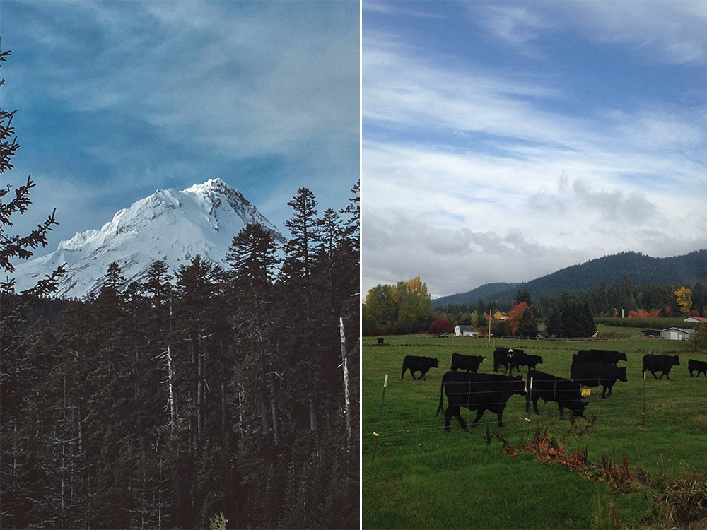 things to do in mount hood oregon On mt hood travel guide