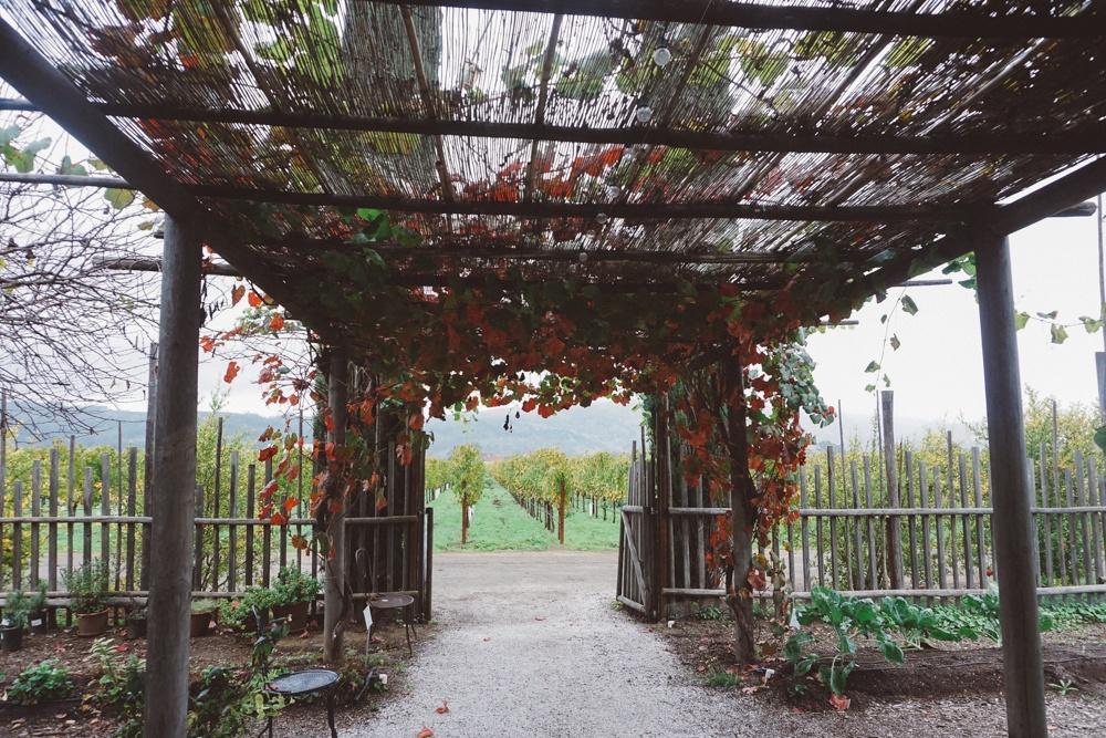 Whimsy Soul - Round Pond Estates