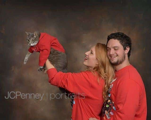 Cat in Christmas Card in sweater