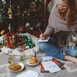Chrismukkah holiday card with cat in sweater