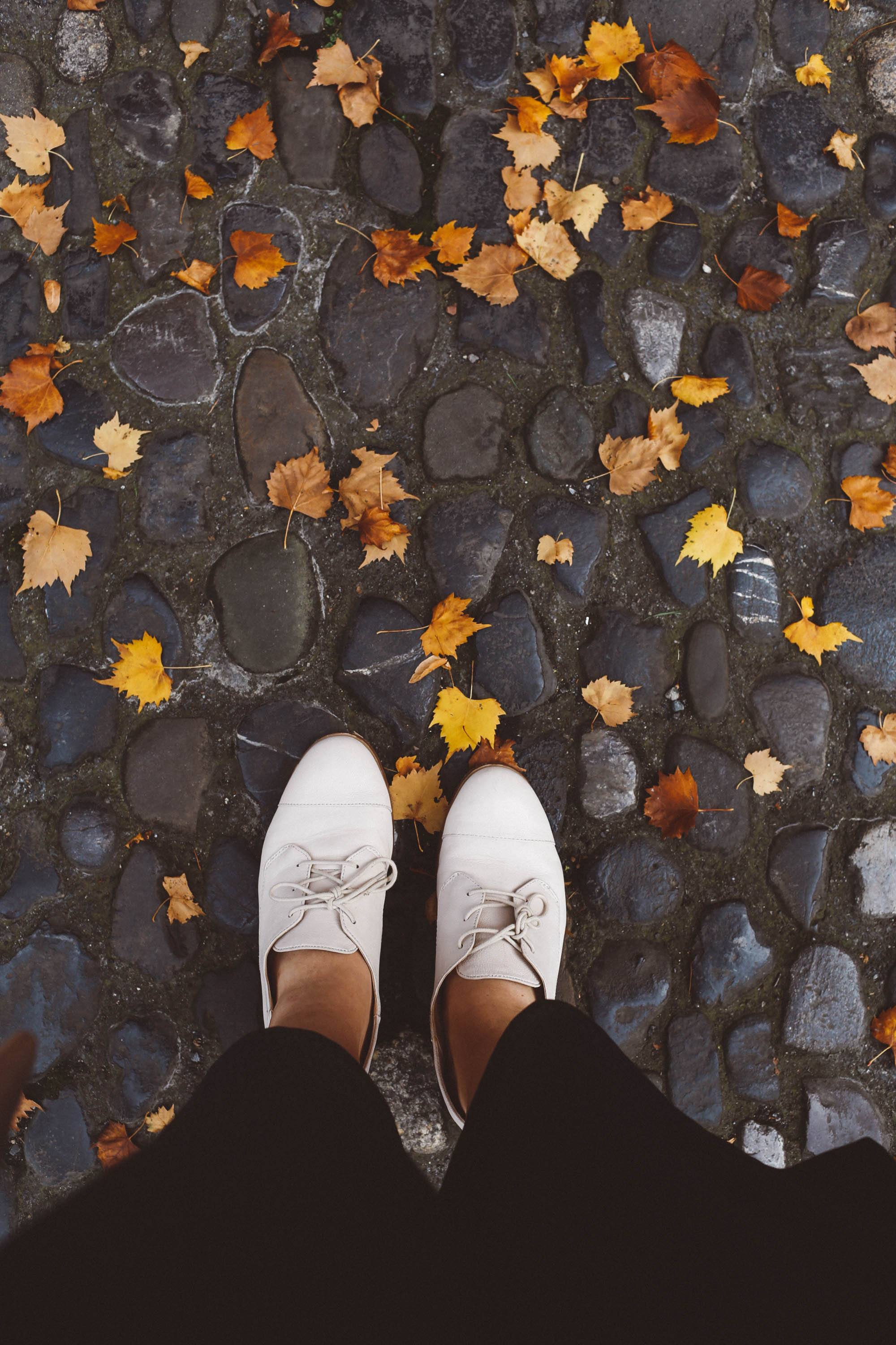 white shoes fall leaves