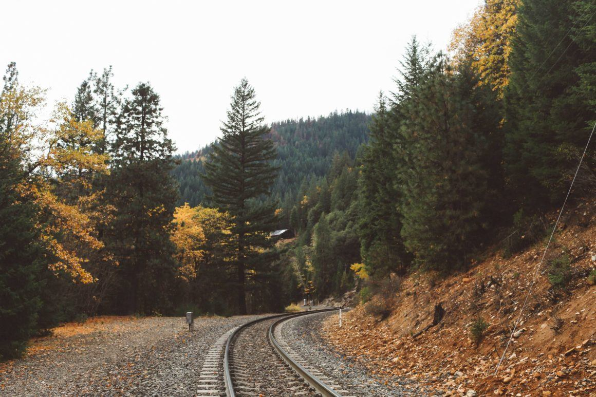 train tracks fall leaves