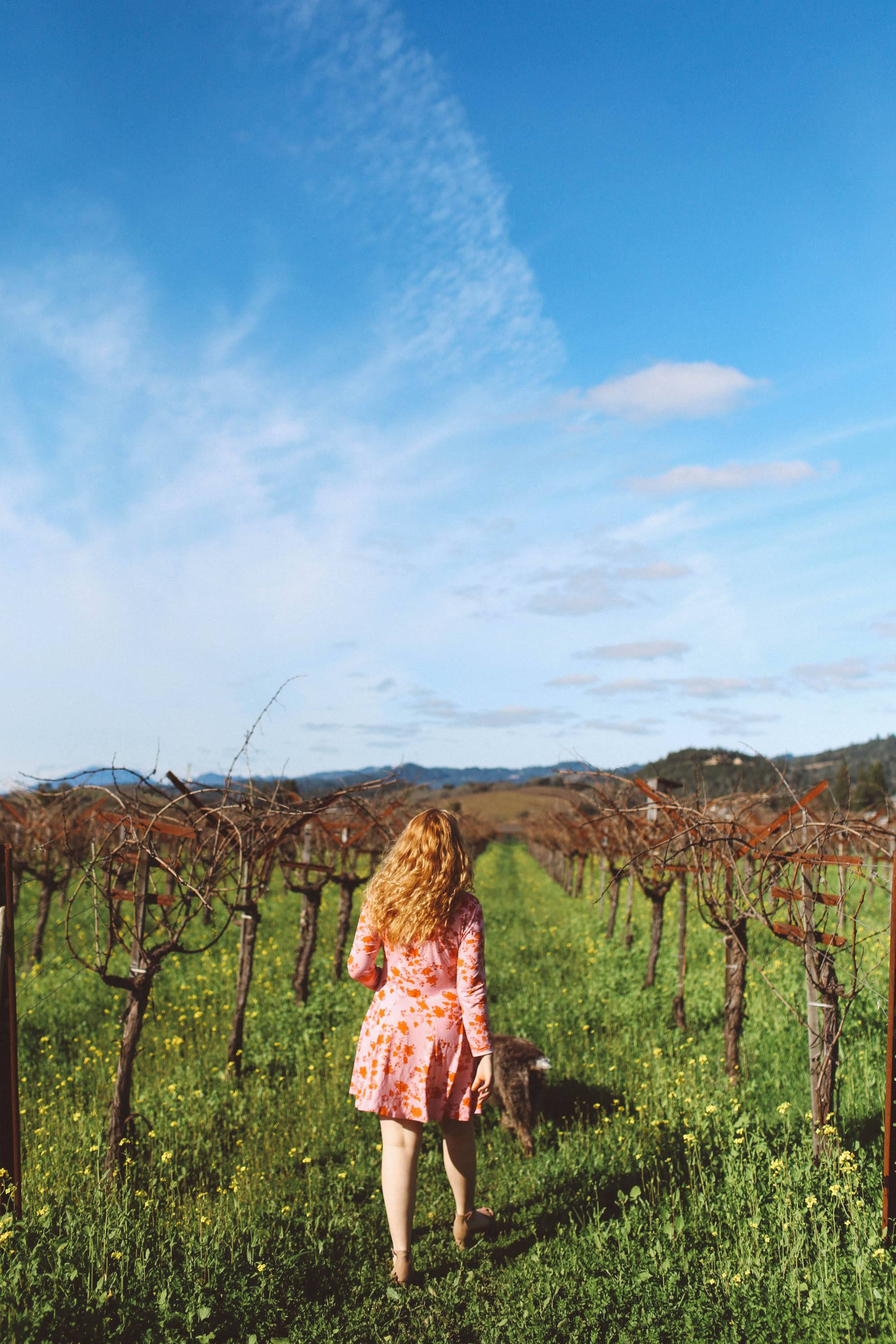 frog's leap winery napa red rose dress