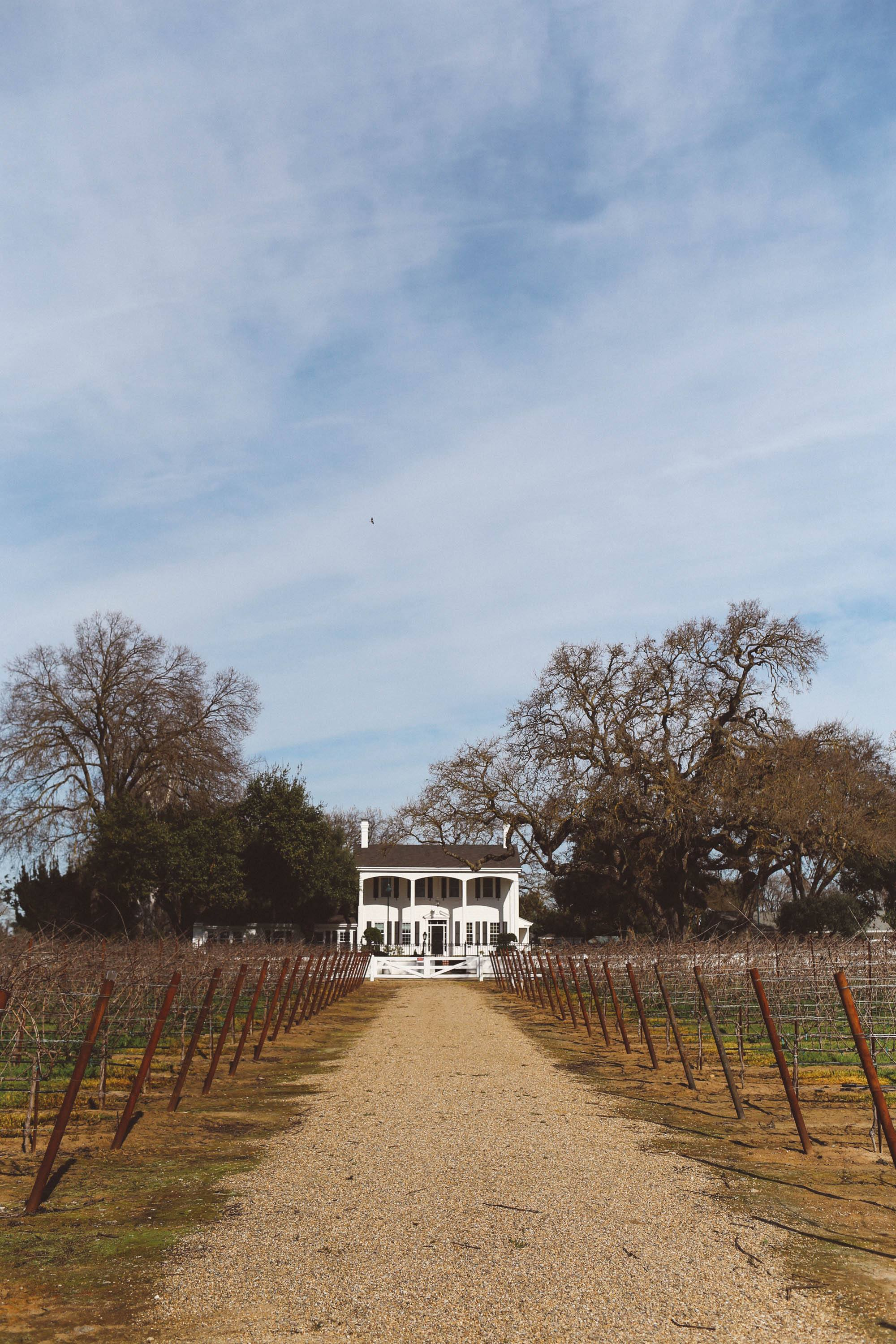 oak farm vineyard lodi