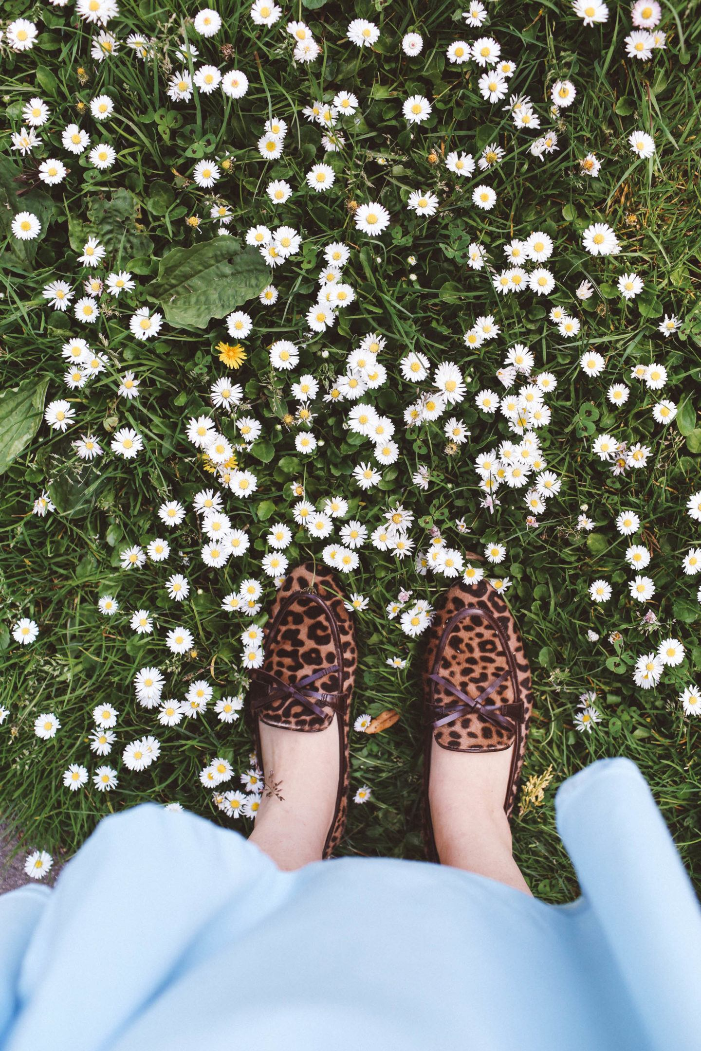 spring flowers leopard loafers