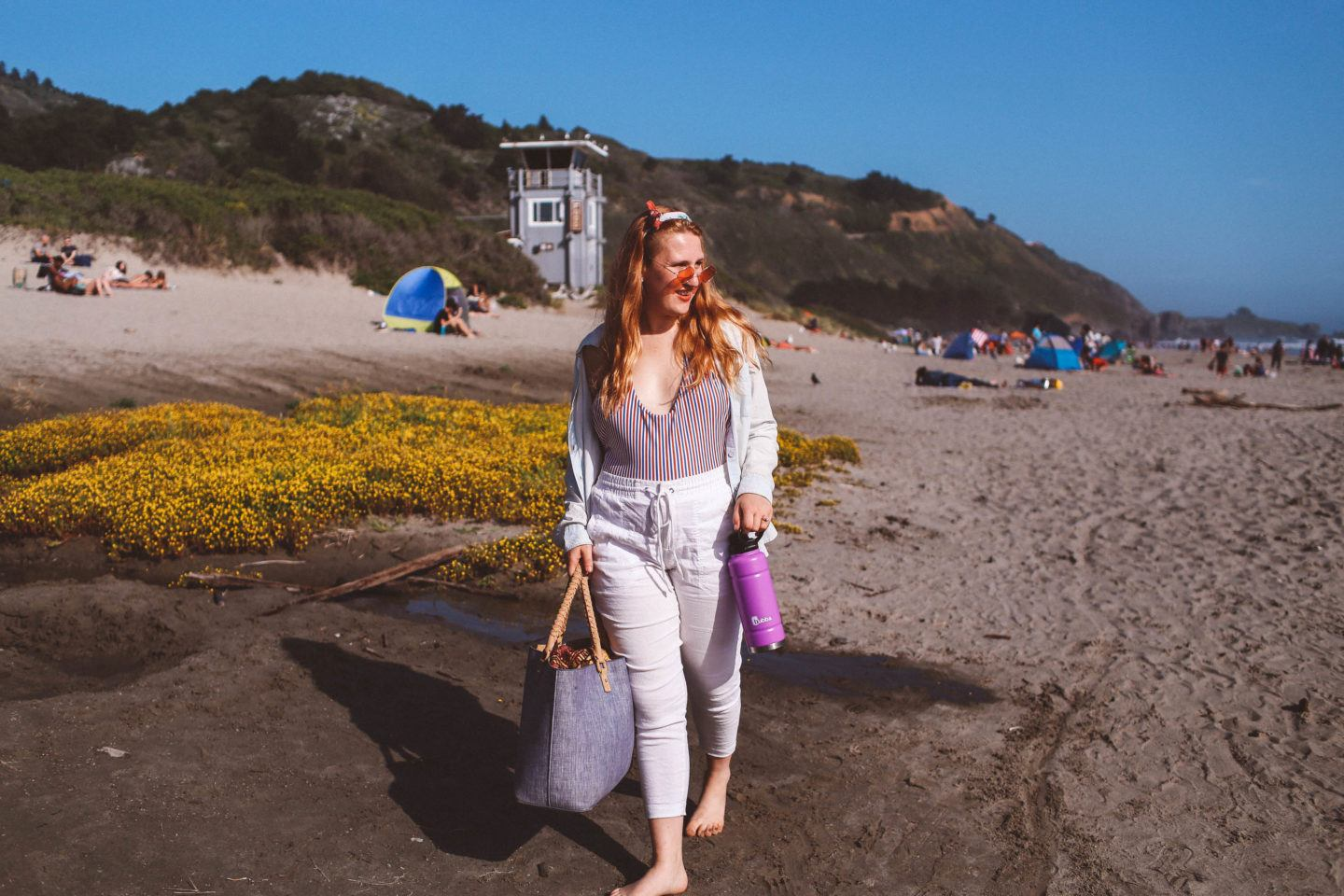 From Redwoods to the Beach