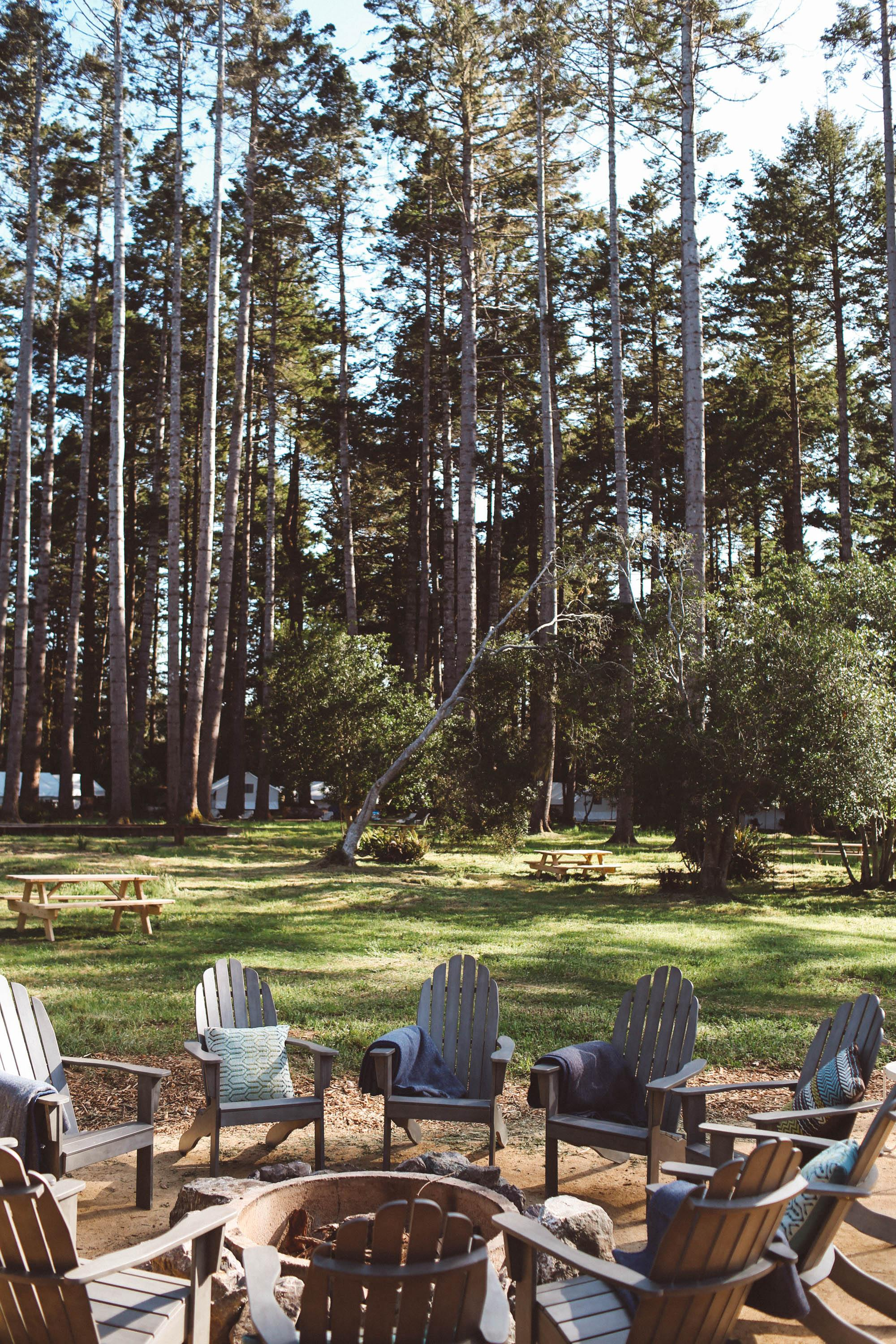 Chairs set up around a fire pit and tall trees in back
