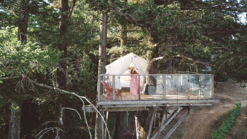 Woman drinking Wine on a treehouse Airbnb
