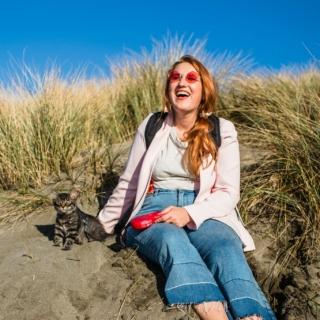 Cat at the beach