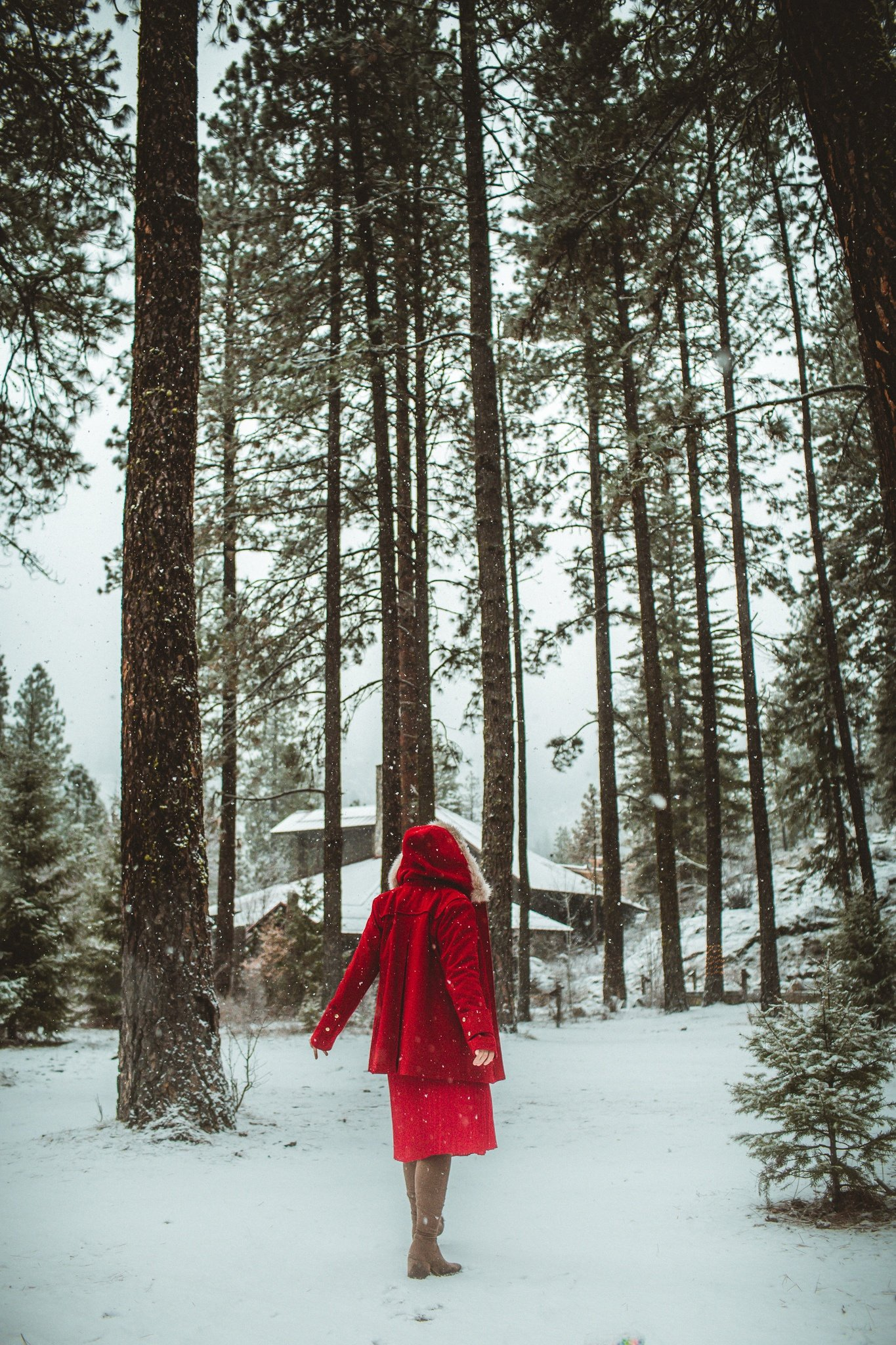 woman in red ensemble in the snowy pnw woods