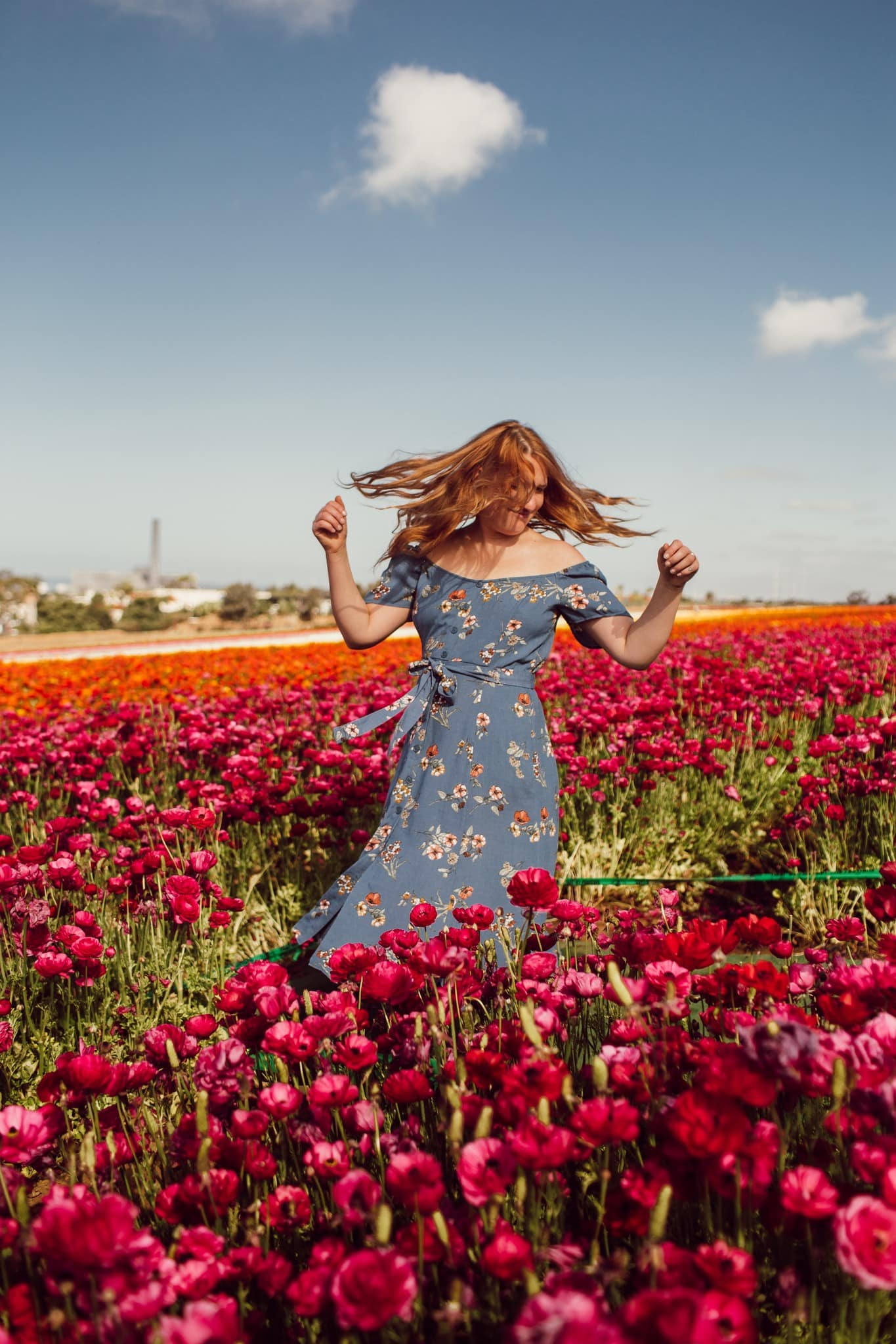 Wearing a blue floral pattern dress at the Carlsbad Flower Fields
