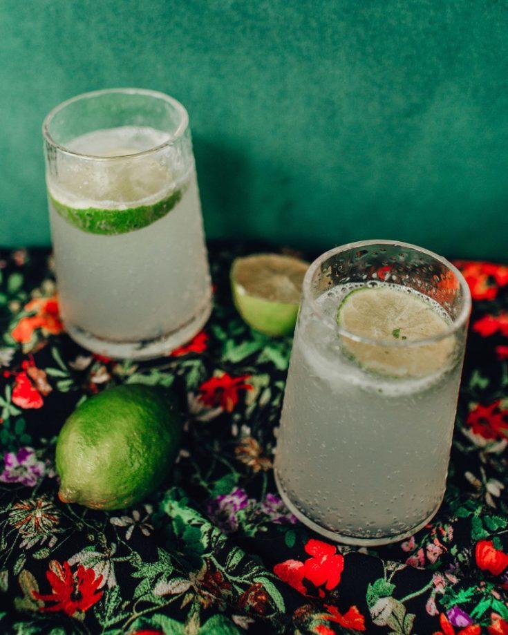 Summer Solstice Limeade Spritzer