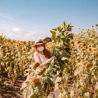 Kara holding a bundle of sunflowers at Andreotti sunflower farm in Half Moon Bay, California