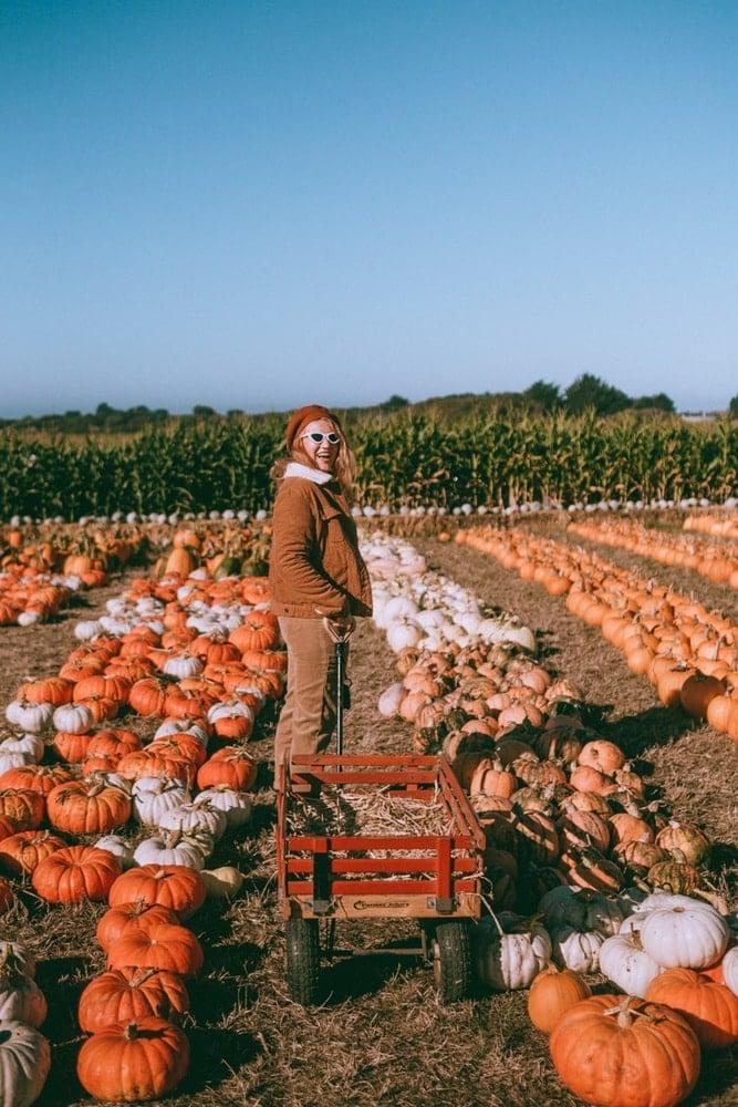 Kara at Farmer John's Pumpkin patch in Half Moon Bay, California