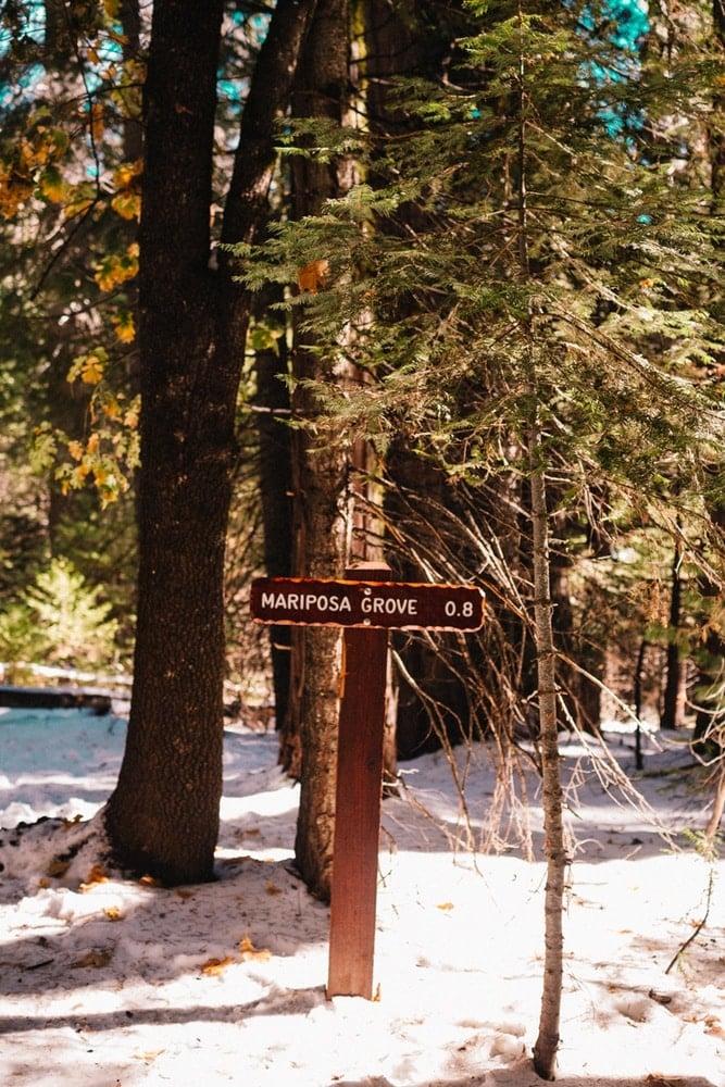 Path to Mariposa Grove in Yosemite National Park