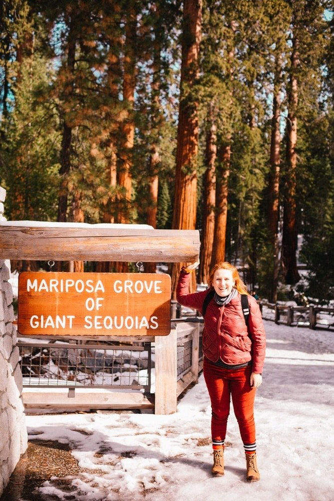 Kara at Mariposa Grove of Giant Sequoias