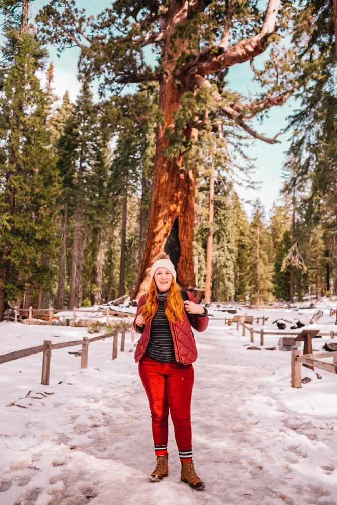 Kara at the Grizzly Giant in Mariposa Grove