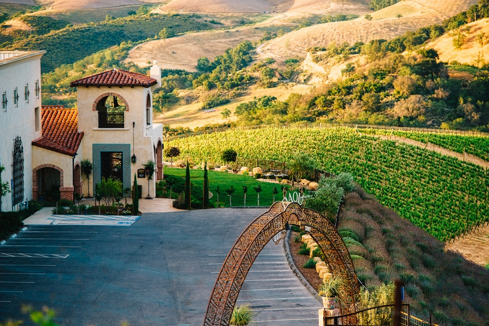 Daou vineyards in Paso Robles